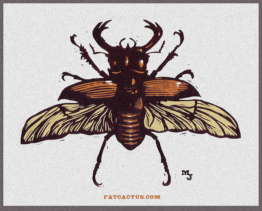 14_stag_beetle