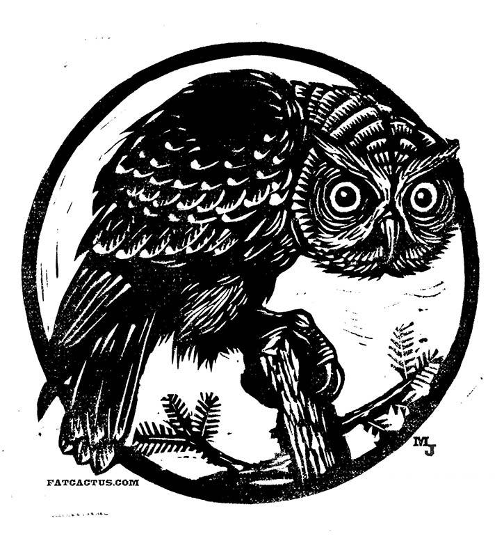 25_Owl